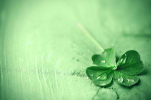 St Patricks March Specials